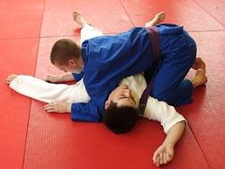 jiu jitsu techniques step by step pdf